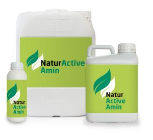 NaturActive_Amin-Bodegon