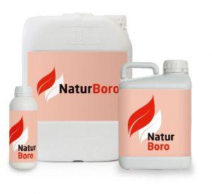 Natur_Boro-Bodegon